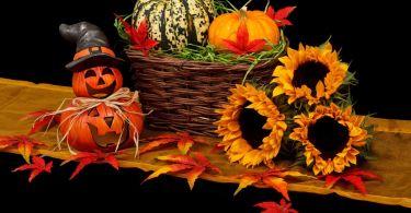 autumn 20461 1280