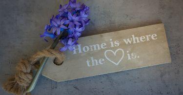 hyacinth 1369537 1920